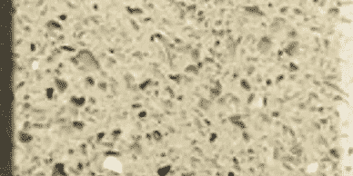 luna-stone-biscotti