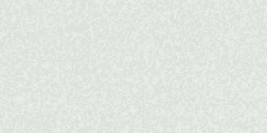 quarella-blanco-sal