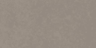 quartzforms-fossil-nautilus